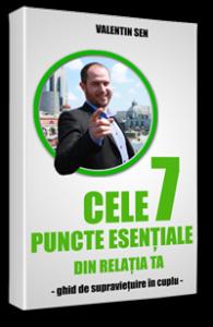Cele 7 puncte esentiale din relatia ta - Ebook - ValentinSen.ro